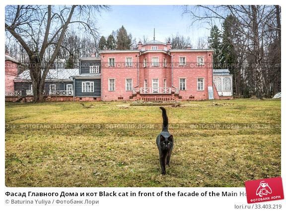 Купить «Фасад Главного Дома и кот Black cat in front of the facade of the Main House», фото № 33403219, снято 9 марта 2020 г. (c) Baturina Yuliya / Фотобанк Лори