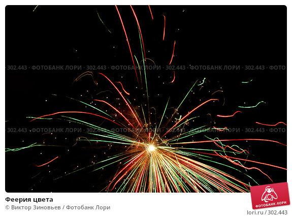 Феерия цвета, иллюстрация № 302443 (c) Виктор Зиновьев / Фотобанк Лори