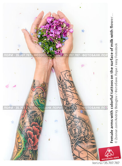 Female arms with colorful tattoos on the surface of milk with flower... Стоковое фото, фотограф Zoonar.com/Andrey Bezuglov / easy Fotostock / Фотобанк Лори
