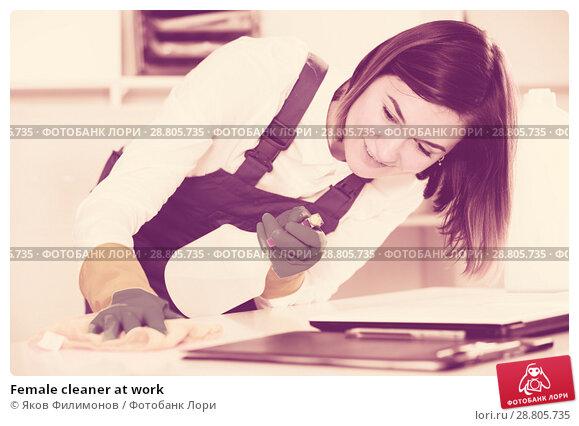 Купить «Female cleaner at work», фото № 28805735, снято 4 июля 2020 г. (c) Яков Филимонов / Фотобанк Лори