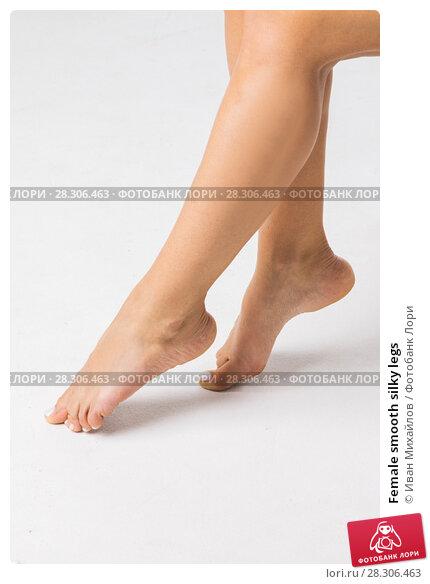 Купить «Female smooth silky legs», фото № 28306463, снято 29 мая 2017 г. (c) Иван Михайлов / Фотобанк Лори