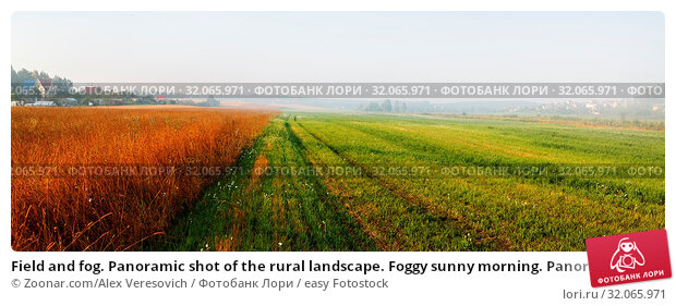 Field and fog. Panoramic shot of the rural landscape. Foggy sunny morning. Panorama shot. Стоковое фото, фотограф Zoonar.com/Alex Veresovich / easy Fotostock / Фотобанк Лори