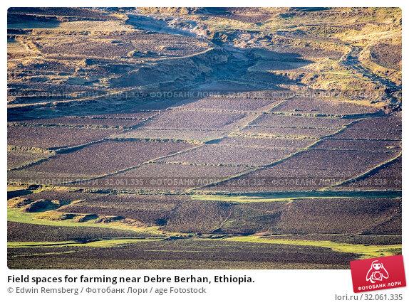 Field spaces for farming near Debre Berhan, Ethiopia. Стоковое фото, фотограф Edwin Remsberg / age Fotostock / Фотобанк Лори