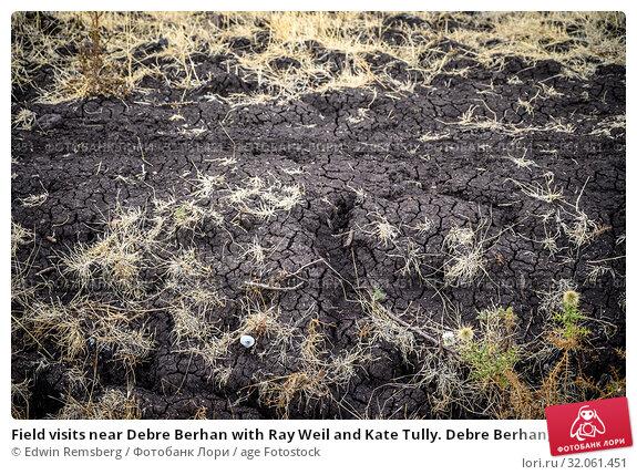 Field visits near Debre Berhan with Ray Weil and Kate Tully. Debre Berhan, Ethiopia. Стоковое фото, фотограф Edwin Remsberg / age Fotostock / Фотобанк Лори