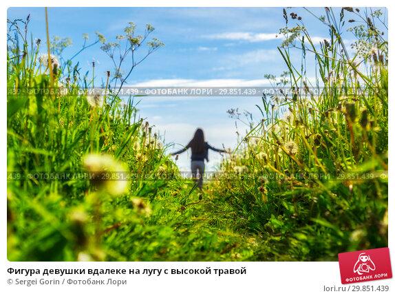 Купить «Фигура девушки вдалеке на лугу с высокой травой», фото № 29851439, снято 9 июля 2017 г. (c) Sergei Gorin / Фотобанк Лори