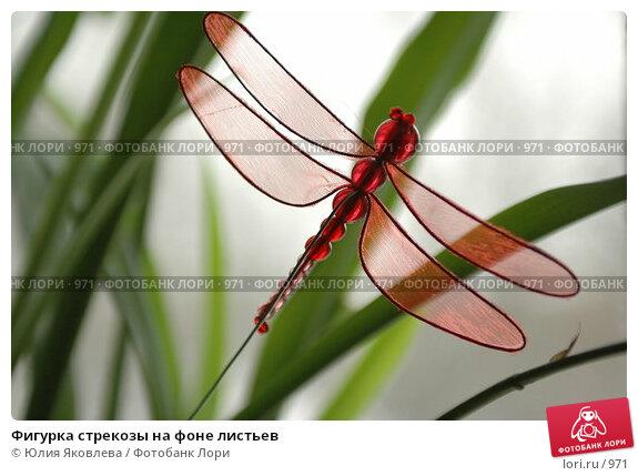 Фигурка стрекозы на фоне листьев, фото № 971, снято 25 февраля 2006 г. (c) Юлия Яковлева / Фотобанк Лори