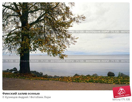 Финский залив осенью, фото № 71135, снято 28 октября 2016 г. (c) Кузнецов Андрей / Фотобанк Лори