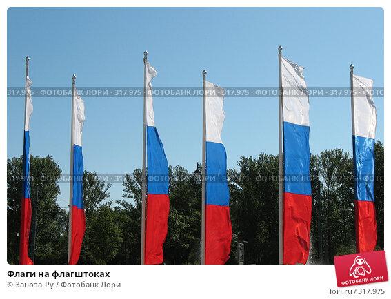 Купить «Флаги на флагштоках», фото № 317975, снято 23 мая 2008 г. (c) Заноза-Ру / Фотобанк Лори