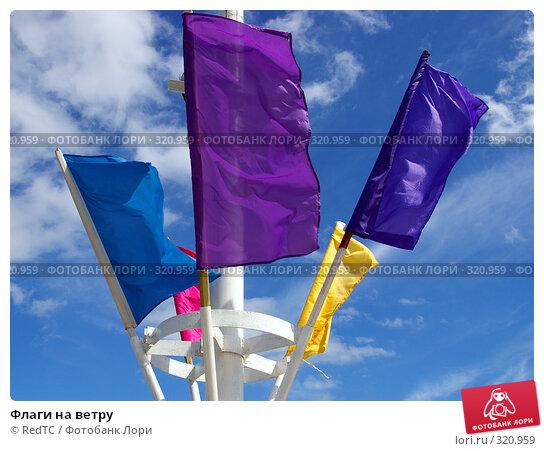 Флаги на ветру, фото № 320959, снято 13 июня 2008 г. (c) RedTC / Фотобанк Лори