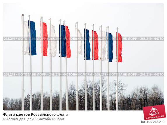 Флаги цветов Российского флага, эксклюзивное фото № 268219, снято 27 апреля 2008 г. (c) Александр Щепин / Фотобанк Лори
