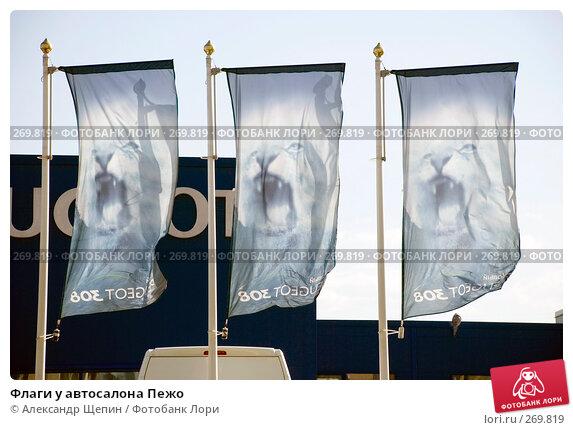 Купить «Флаги у автосалона Пежо», эксклюзивное фото № 269819, снято 2 мая 2008 г. (c) Александр Щепин / Фотобанк Лори