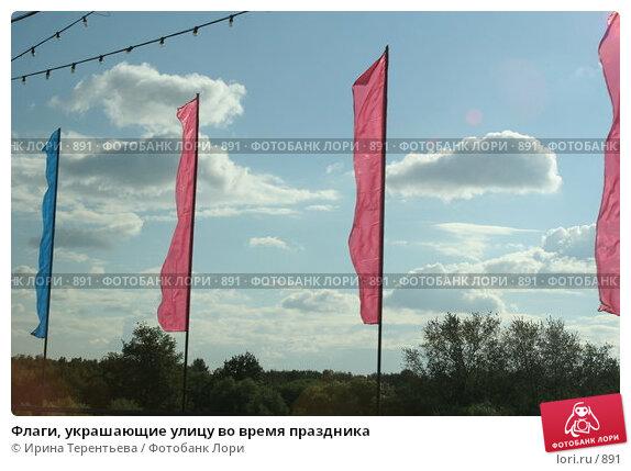 Флаги, украшающие улицу во время праздника, эксклюзивное фото № 891, снято 2 сентября 2005 г. (c) Ирина Терентьева / Фотобанк Лори