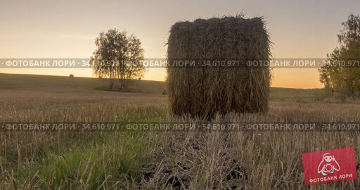 Flat hill meadow timelapse at the summer sunset time. Wild nature and rural haystacks on grass field. Sun rays and green trees. Motorised dolly slider. Стоковое видео, видеограф Александр Маркин / Фотобанк Лори