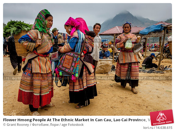 the history of the hmong people in hebei province Miao 苗族 in vietnam they're known as the hmong that besides the information that made it into the history books city in hebei province.