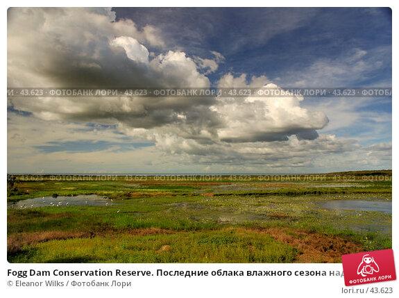 Fogg Dam Conservation Reserve. Последние облака влажного сезона над желтеющей травой биллабонга., фото № 43623, снято 13 мая 2007 г. (c) Eleanor Wilks / Фотобанк Лори
