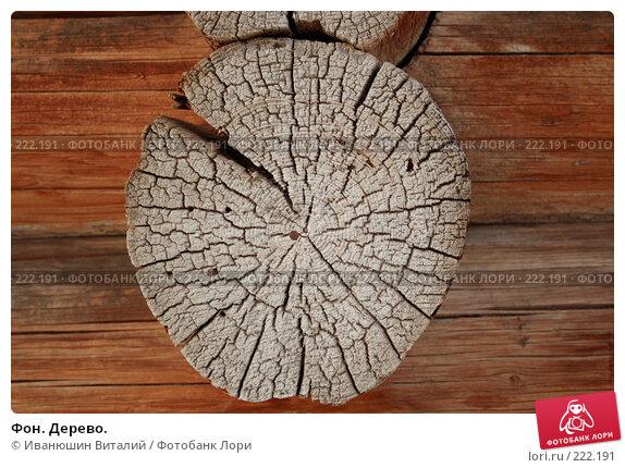 Фон. Дерево., фото № 222191, снято 9 марта 2008 г. (c) Иванюшин Виталий / Фотобанк Лори