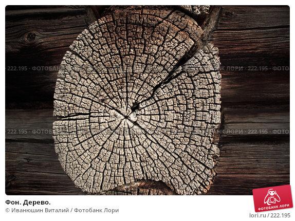 Фон. Дерево., фото № 222195, снято 9 марта 2008 г. (c) Иванюшин Виталий / Фотобанк Лори