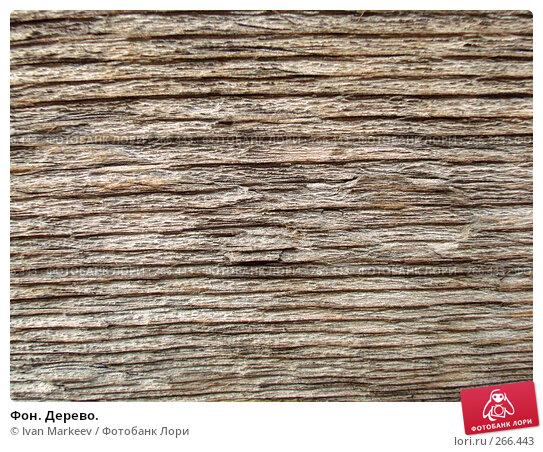 Фон. Дерево., фото № 266443, снято 28 апреля 2017 г. (c) Василий Каргандюм / Фотобанк Лори