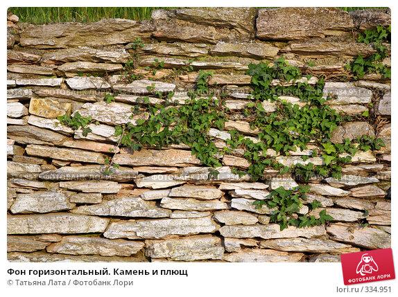Фон горизонтальный. Камень и плющ, эксклюзивное фото № 334951, снято 28 апреля 2008 г. (c) Татьяна Лата / Фотобанк Лори
