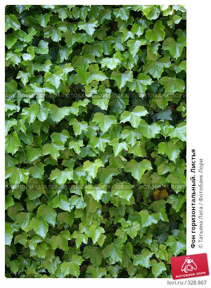 Купить «Фон горизонтальный. Листья», эксклюзивное фото № 328867, снято 10 мая 2008 г. (c) Татьяна Лата / Фотобанк Лори