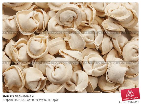 Купить «Фон из пельменей», фото № 314651, снято 23 ноября 2005 г. (c) Кравецкий Геннадий / Фотобанк Лори