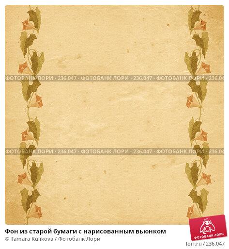 Фон из старой бумаги с нарисованным вьюнком, иллюстрация № 236047 (c) Tamara Kulikova / Фотобанк Лори