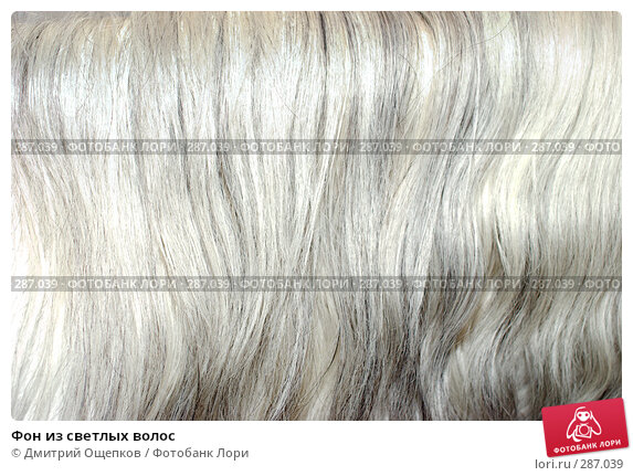 Купить «Фон из светлых волос», фото № 287039, снято 1 мая 2008 г. (c) Дмитрий Ощепков / Фотобанк Лори