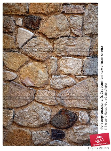 Фон вертикальный. Старинная каменная стена, эксклюзивное фото № 293783, снято 26 апреля 2008 г. (c) Татьяна Лата / Фотобанк Лори
