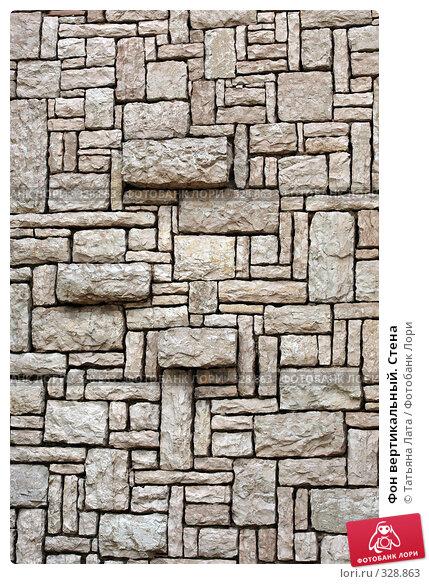 Купить «Фон вертикальный. Стена», эксклюзивное фото № 328863, снято 2 мая 2008 г. (c) Татьяна Лата / Фотобанк Лори