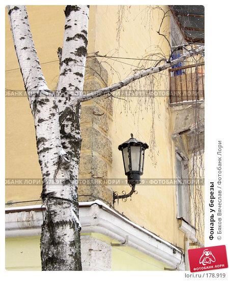 Фонарь у березы, фото № 178919, снято 6 января 2008 г. (c) Бяков Вячеслав / Фотобанк Лори