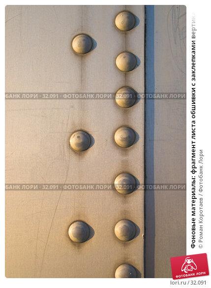 Фоновые материалы: фрагмент листа обшивки с заклепками вертикально, фото № 32091, снято 5 апреля 2007 г. (c) Роман Коротаев / Фотобанк Лори