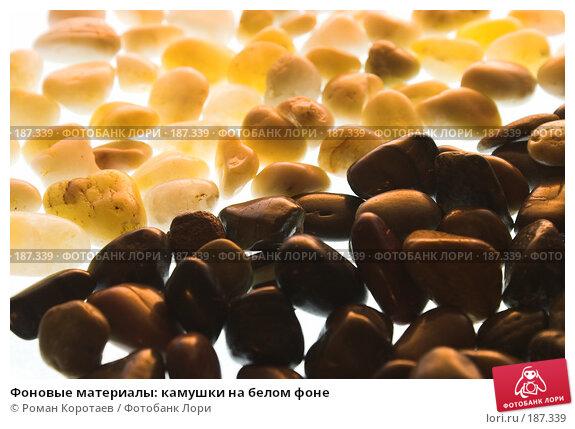 Фоновые материалы: камушки на белом фоне, фото № 187339, снято 26 января 2008 г. (c) Роман Коротаев / Фотобанк Лори