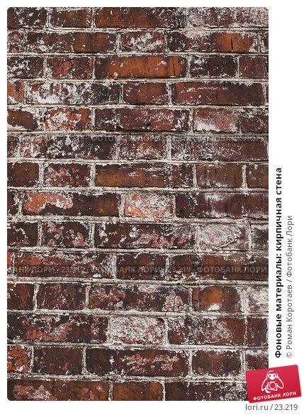 Купить «Фоновые материалы: кирпичная стена», фото № 23219, снято 6 января 2007 г. (c) Роман Коротаев / Фотобанк Лори
