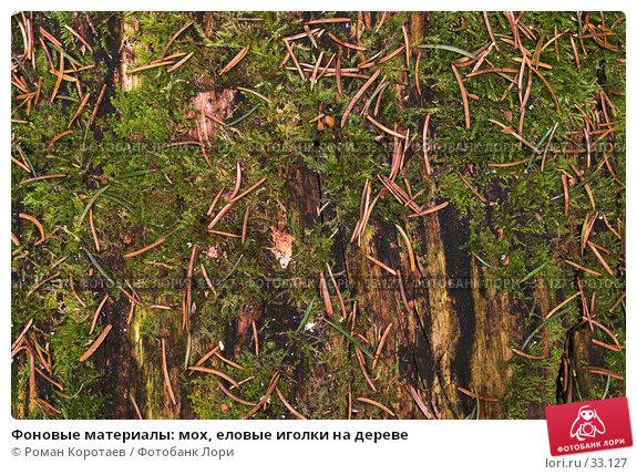 Фоновые материалы: мох, еловые иголки на дереве, фото № 33127, снято 14 апреля 2007 г. (c) Роман Коротаев / Фотобанк Лори