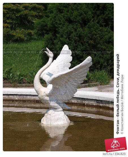 Купить «Фонтан - белый лебедь. Сочи, дендрарий», фото № 334823, снято 24 апреля 2018 г. (c) Константин Босов / Фотобанк Лори