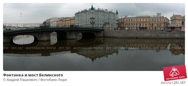 Фонтанка и мост Белинского, фото № 291187, снято 28 июля 2017 г. (c) Андрей Пашкевич / Фотобанк Лори