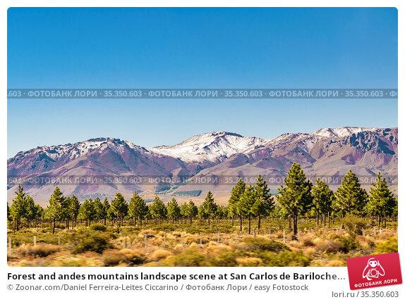 Forest and andes mountains landscape scene at San Carlos de Bariloche... Стоковое фото, фотограф Zoonar.com/Daniel Ferreira-Leites Ciccarino / easy Fotostock / Фотобанк Лори