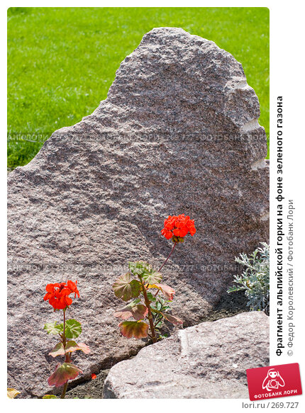 Фрагмент альпийской горки на фоне зеленого газона, фото № 269727, снято 1 мая 2008 г. (c) Федор Королевский / Фотобанк Лори