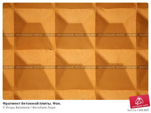 Фрагмент бетонной плиты. Фон., фото № 243807, снято 6 апреля 2008 г. (c) Игорь Веснинов / Фотобанк Лори