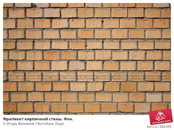 Фрагмент кирпичной стены. Фон., фото № 244955, снято 6 апреля 2008 г. (c) Игорь Веснинов / Фотобанк Лори