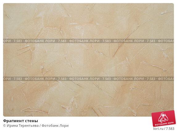 Фрагмент стены, эксклюзивное фото № 7583, снято 6 августа 2005 г. (c) Ирина Терентьева / Фотобанк Лори