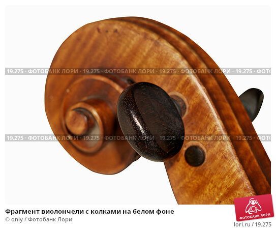 Фрагмент виолончели с колками на белом фоне, фото № 19275, снято 10 ноября 2005 г. (c) only / Фотобанк Лори