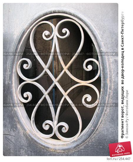 Фрагмент ворот, ведущих  во двор-колодец в Санкт-Петербурге, фото № 254447, снято 12 апреля 2008 г. (c) Заноза-Ру / Фотобанк Лори