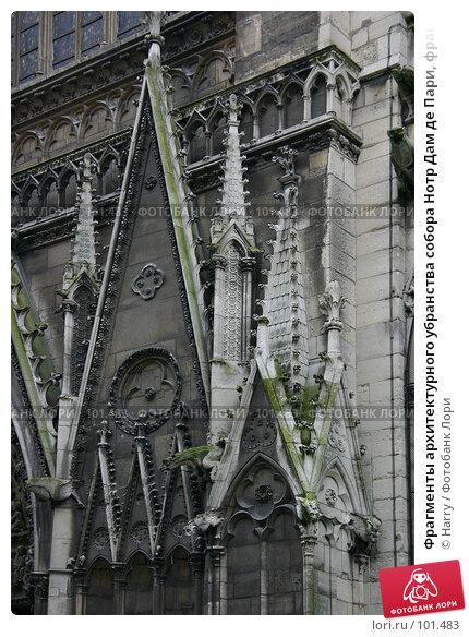 Фрагменты архитектурного убранства собора Нотр Дам де Пари, франция, Париж, фото № 101483, снято 22 февраля 2006 г. (c) Harry / Фотобанк Лори