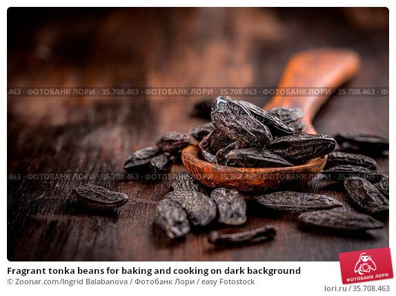 Fragrant tonka beans for baking and cooking on dark background. Стоковое фото, фотограф Zoonar.com/Ingrid Balabanova / easy Fotostock / Фотобанк Лори