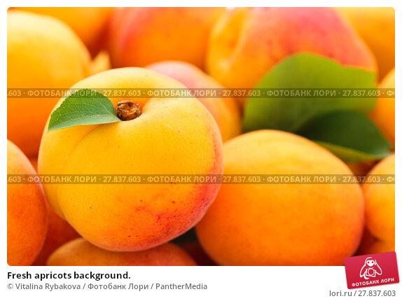 Купить «Fresh apricots background.», фото № 27837603, снято 16 октября 2018 г. (c) PantherMedia / Фотобанк Лори