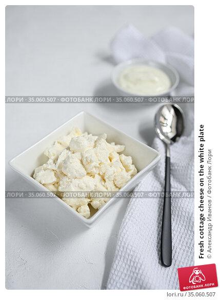Fresh cottage cheese on the white plate. Стоковое фото, фотограф Александр Иванов / Фотобанк Лори