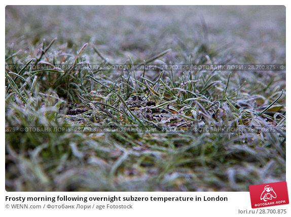 Купить «Frosty morning following overnight subzero temperature in London Featuring: Atmosphere Where: London, United Kingdom When: 29 Dec 2016 Credit: WENN.com», фото № 28700875, снято 29 декабря 2016 г. (c) age Fotostock / Фотобанк Лори