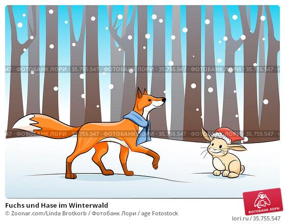 Fuchs und Hase im Winterwald. Стоковое фото, фотограф Zoonar.com/Linda Brotkorb / age Fotostock / Фотобанк Лори