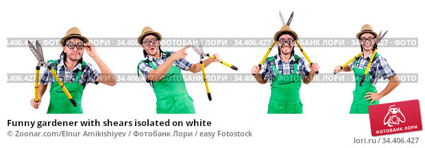 Funny gardener with shears isolated on white. Стоковое фото, фотограф Zoonar.com/Elnur Amikishiyev / easy Fotostock / Фотобанк Лори